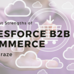 commerce cloud, b2b commerce, commerce cloud, b2b ecommerce platform, salesforce commerce cloud, business to business e commerce, community online,