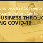 How a Salesforce B2B Commerce Subscription Storefront can pull your B2B business through in these times of COVID